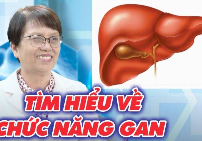 Tìm hiểu chức năng của gan và loại bỏ các thói quen gây hại cho gan